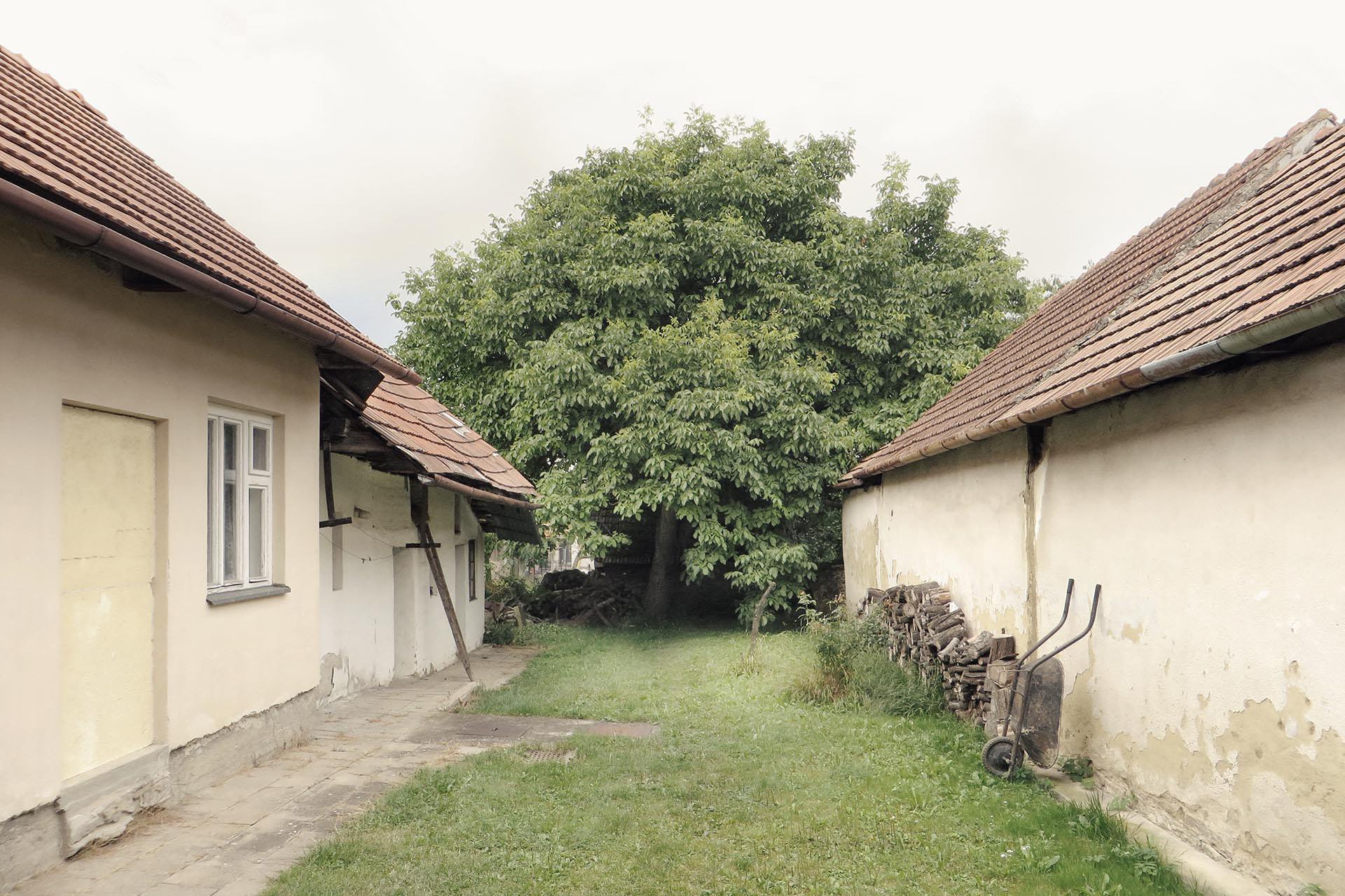 Hospodářský dvorek tradičního venkovského domu ve Slavkově se vzrostlým ořechem