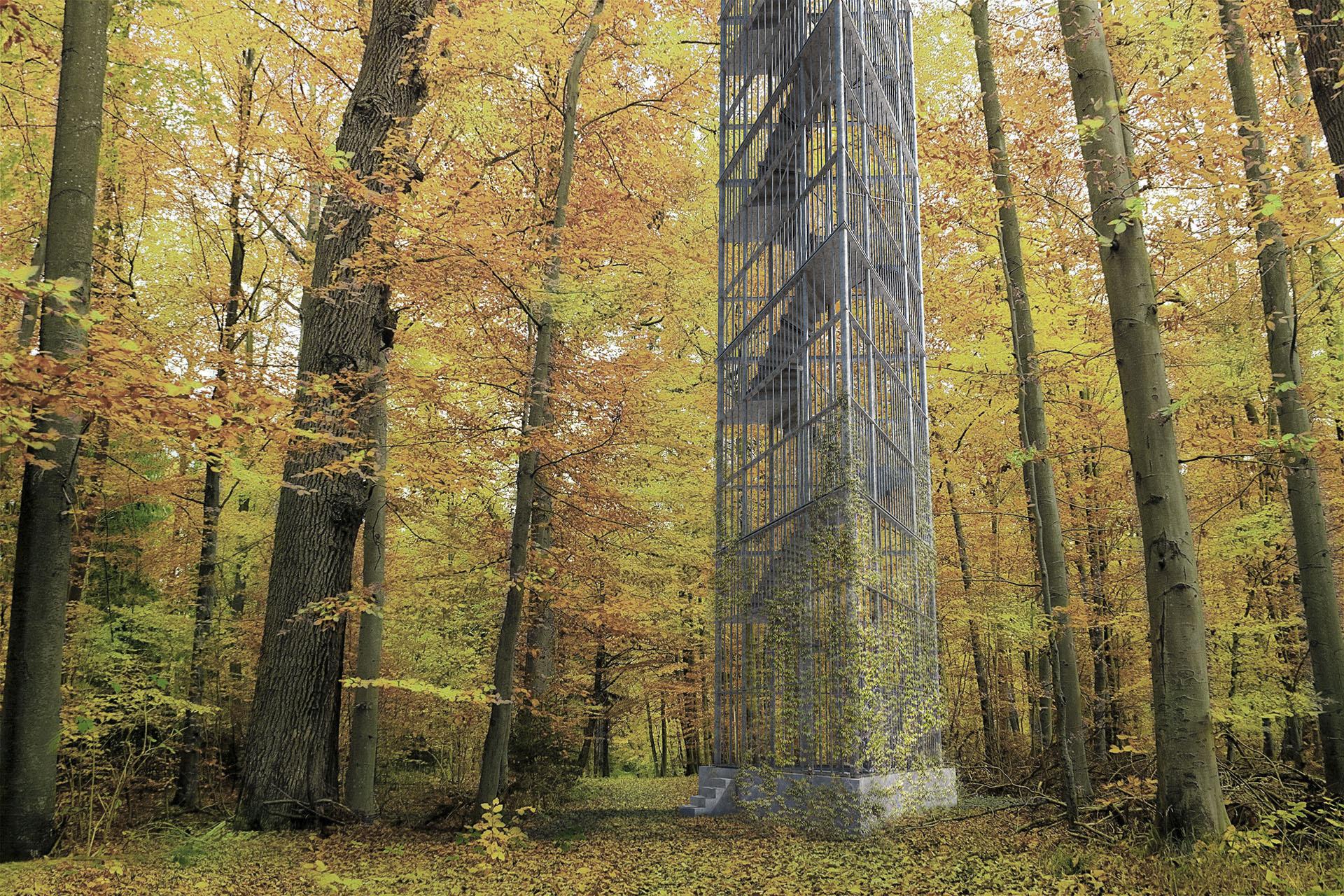 Pata rozhlednya vstupní úroveň v prostoru lesa